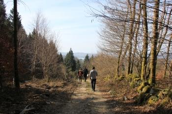 Activités de randonnée de proximité et d'orientation